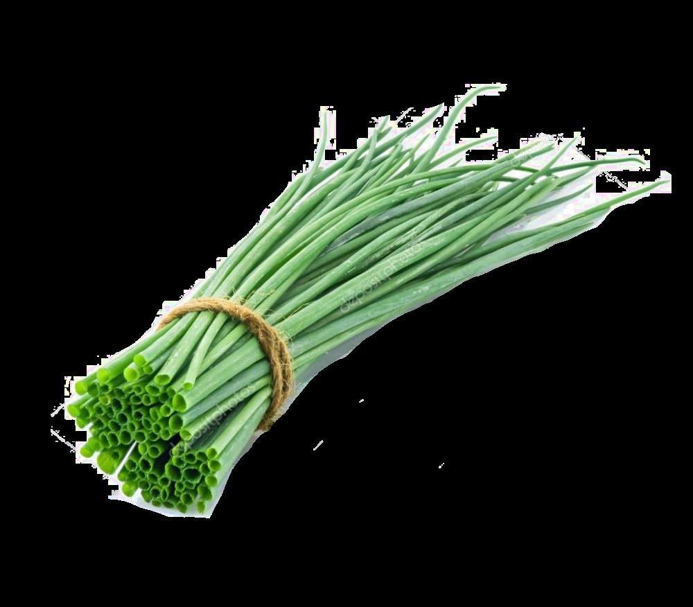 Зеленым луком картинки